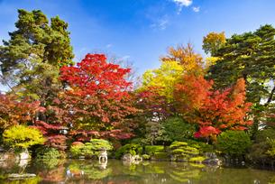 秋のもみじ公園の写真素材 [FYI04746368]