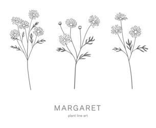 花のイラストセット マーガレットのイラスト素材 [FYI04746572]