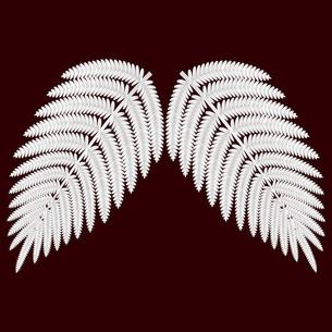 シダ植物の葉 ウラジロ イラストのイラスト素材 [FYI04746588]