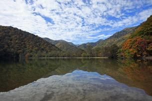 11月 紅葉の西ノ湖 -奥日光の湖-の写真素材 [FYI04746613]