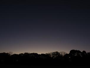 夜明けの公園の写真素材 [FYI04746725]