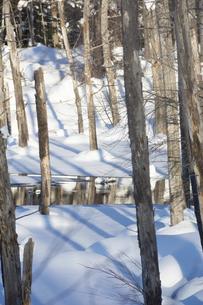 雪に覆われた冬の青い池の写真素材 [FYI04746734]