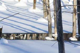 雪に覆われた冬の青い池の写真素材 [FYI04746735]