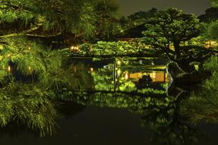 【香川県 高松市】秋の夜間ライトアップの栗林公園 日本庭園の写真素材 [FYI04747235]
