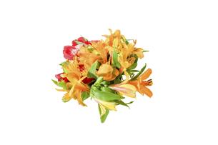 アルストロメリアの花束の写真素材 [FYI04747264]