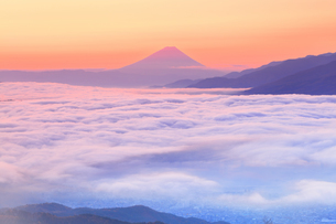 高ボッチ高原より諏訪湖に雲海と朝焼けの富士山の写真素材 [FYI04747343]