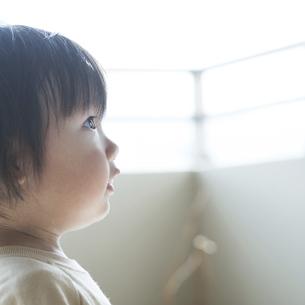 見上げる幼児の写真素材 [FYI04747470]