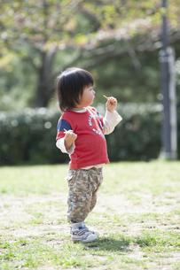 おやつを食べる男児の写真素材 [FYI04747505]