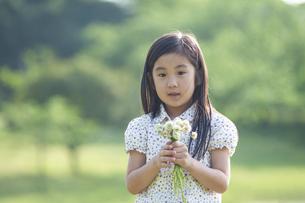 シロツメクサの花束を持つ女の子の写真素材 [FYI04747535]