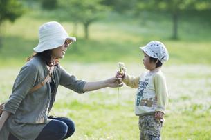 母親にシロツメクサの花束を差し出す男児の写真素材 [FYI04747545]