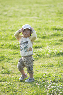 公園で遊ぶ男児の写真素材 [FYI04747555]