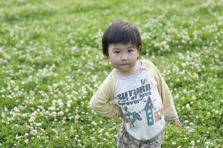 公園で遊ぶ男児の写真素材 [FYI04747562]