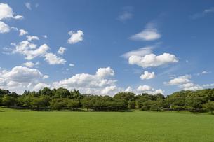 草原と青空と雲の写真素材 [FYI04747596]