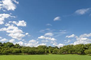 草原と青空と雲の写真素材 [FYI04747598]