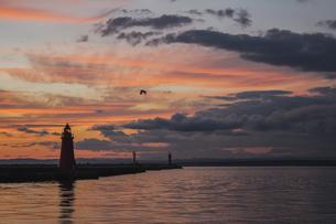 夕焼けのオレンジ色の空にシルエットが映し出される釧路港の灯台の写真素材 [FYI04747648]