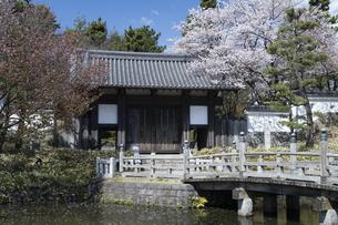 忍城の写真素材 [FYI04747681]
