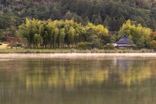 広沢池の朝靄の写真素材 [FYI04747784]