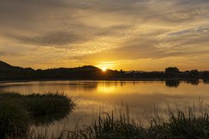 広沢池と朝日の写真素材 [FYI04747787]