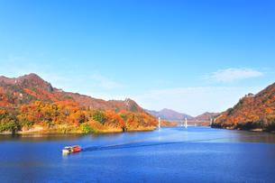 秋の八ッ場ダムに水陸両用バスYAMBAダックツアーと紅葉の写真素材 [FYI04748077]