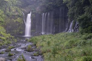 白糸の滝の写真素材 [FYI04748082]