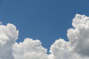青空に入道雲の写真素材 [FYI04748144]