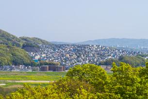 男山の山間部の住宅街の写真素材 [FYI04748177]