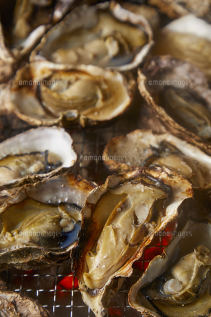 焼き牡蠣の写真素材 [FYI04748218]