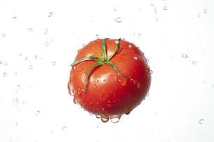 トマトの写真素材 [FYI04748414]