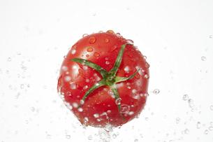 トマトの写真素材 [FYI04748430]