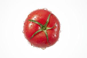 トマトの写真素材 [FYI04748431]