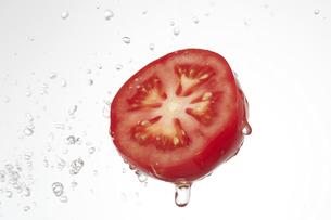 トマトの写真素材 [FYI04748435]
