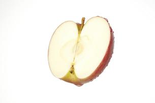リンゴの写真素材 [FYI04748445]