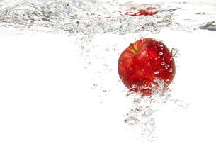 リンゴの写真素材 [FYI04748629]