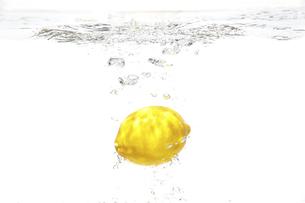 レモンの写真素材 [FYI04748645]