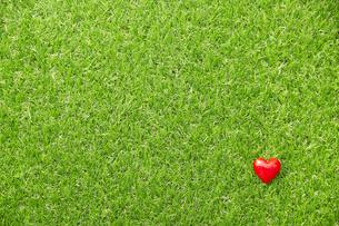 芝生とハートの写真素材 [FYI04748830]