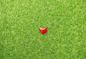芝生とハートの写真素材 [FYI04748833]
