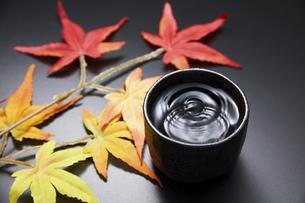 日本酒の写真素材 [FYI04749274]