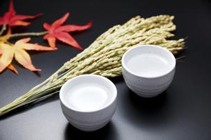 日本酒の写真素材 [FYI04749286]