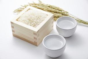 日本酒の写真素材 [FYI04749303]