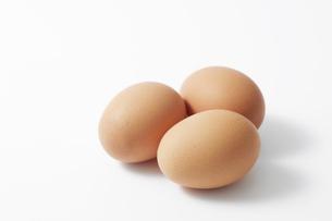 卵の写真素材 [FYI04749844]