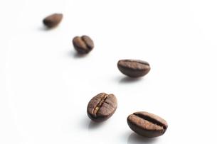 コーヒー豆の写真素材 [FYI04750638]