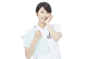 看護師の写真素材 [FYI04750967]