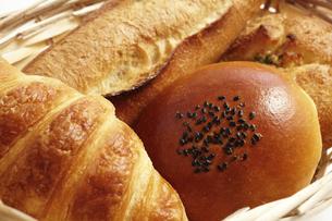 パンの写真素材 [FYI04751309]