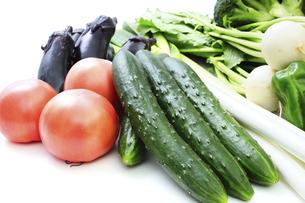 野菜集合の写真素材 [FYI04751720]