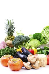 野菜集合の写真素材 [FYI04751812]