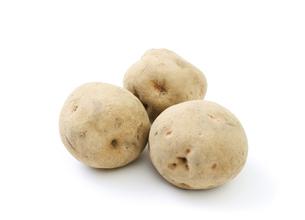 ジャガイモの写真素材 [FYI04751920]