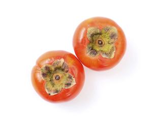 柿の写真素材 [FYI04751958]