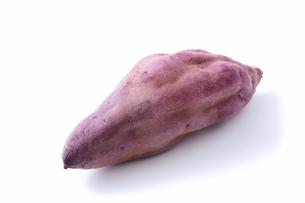 サツマイモの写真素材 [FYI04751978]