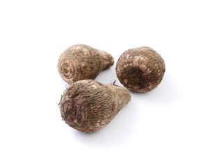 里芋の写真素材 [FYI04752004]