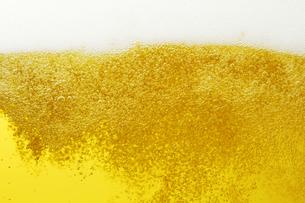 ビールの写真素材 [FYI04752978]